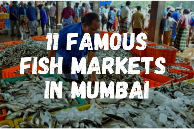 11 Famous Fish Market in Mumbai